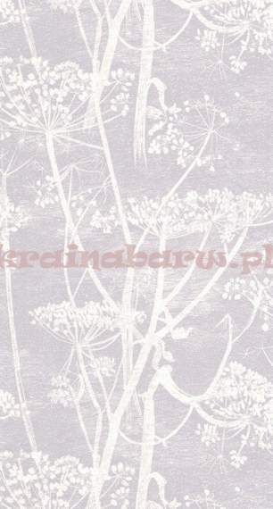 Tapeta 95/9049  Cow Parsley