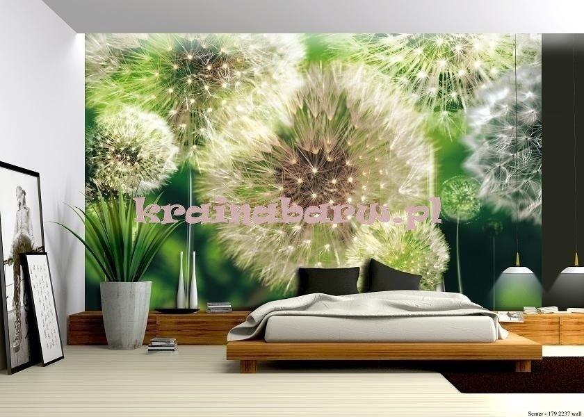 Fototapeta 056 Dmuchawce 3d Fototapety Fototapety Kwiaty