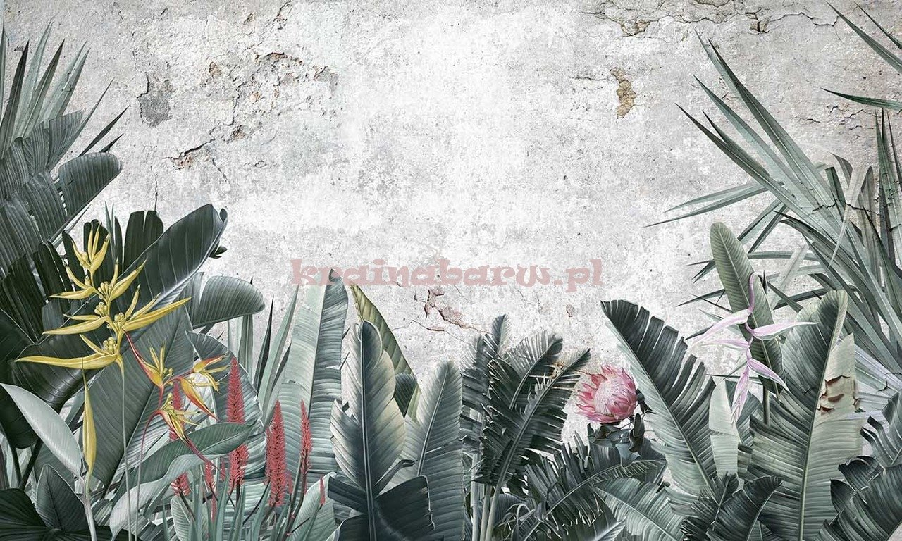 Fototapeta Tropikalne Duże Liście I Kwiaty Paradise I Fototapety