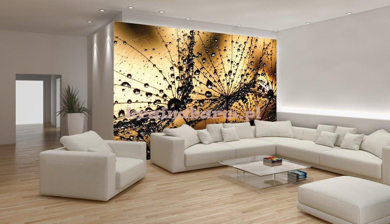 Fototapeta na flizelinie 1008ve dmuchawce fototapety for Wall e deco vendita on line