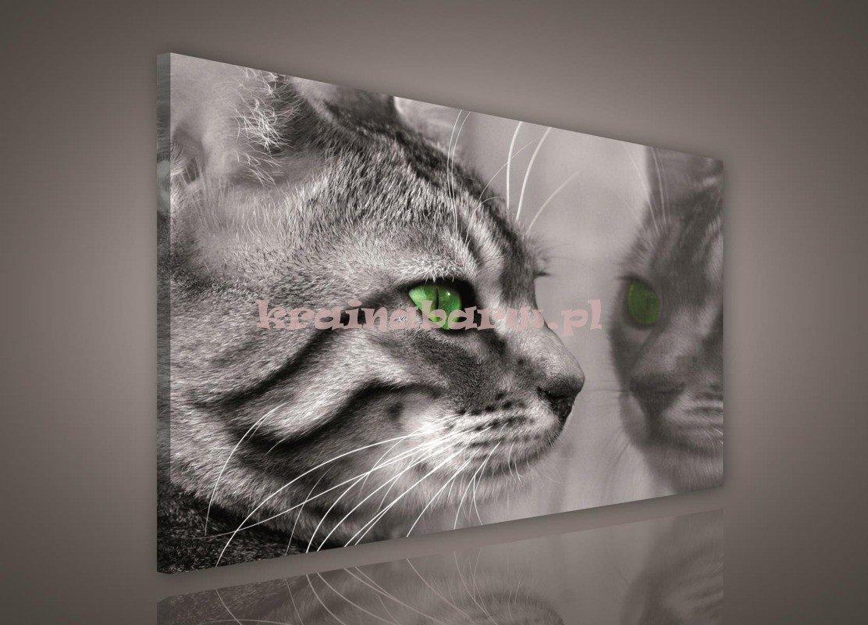 Obraz Na Płótnie Pp181o1 Kot Obrazy Obrazy Fauna I Flora Sklep